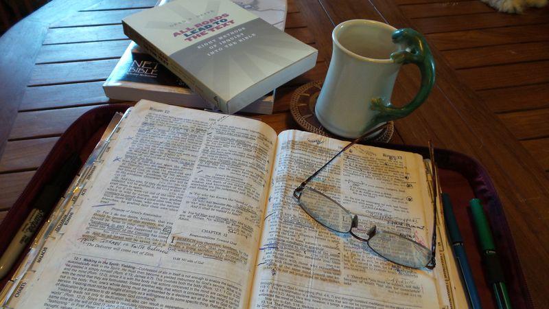 Bible & gecko